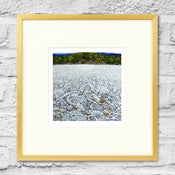 Image of Coral Beach - Framed Print