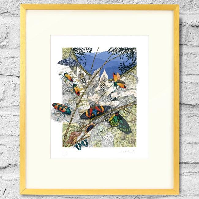Image of Beetles, Moths and Butterflies - Framed Print