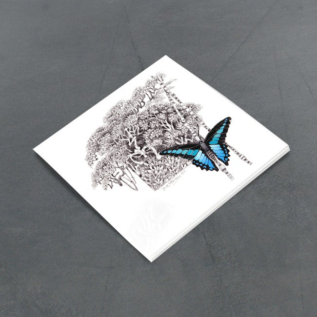 Image of Blue Triangle Butterfly - Miniature