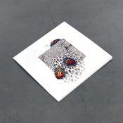 Image of Jewel Bugs - Miniature