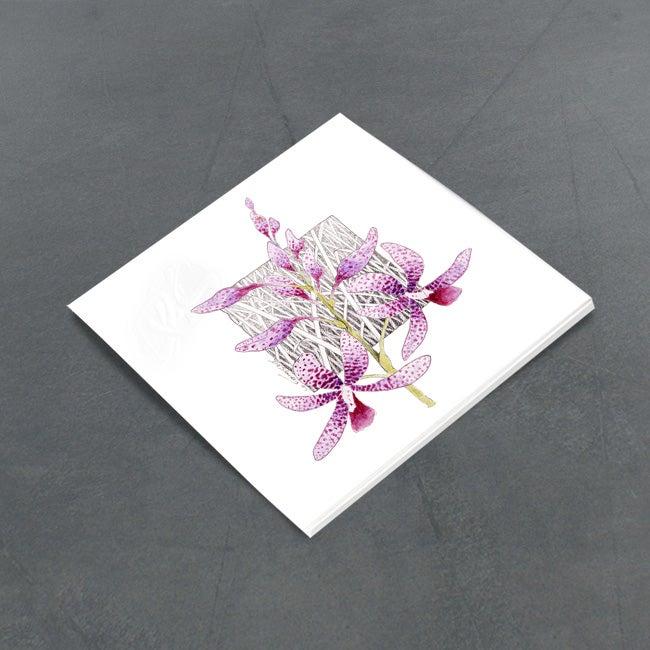 Image of Dipodium Ensifolium - Miniature