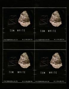 Image of 23 Tom White