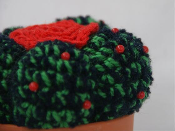 Image of Astrophytum