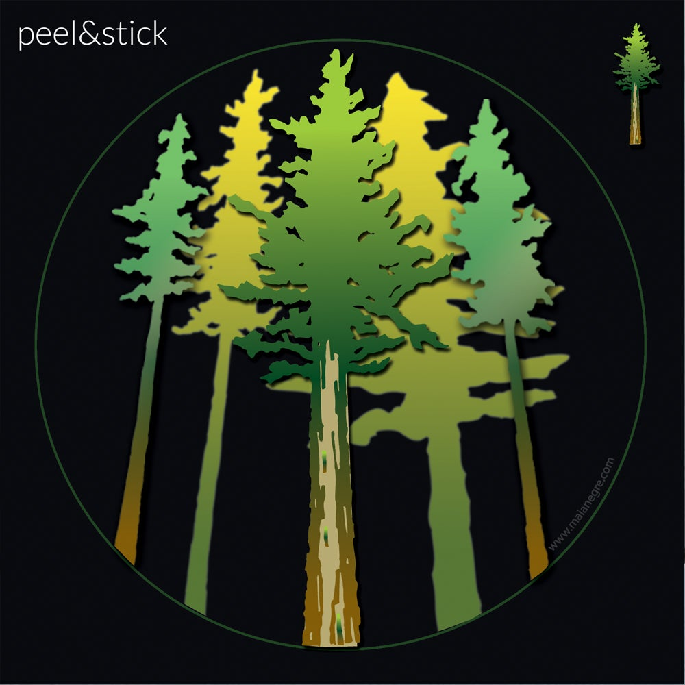 Image of Redwood Trees Decal