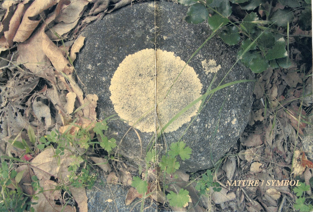 Image of NATURE/SYMBOL