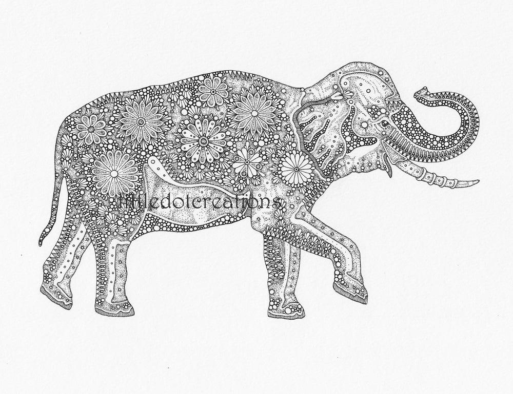 Image of The Elephant House