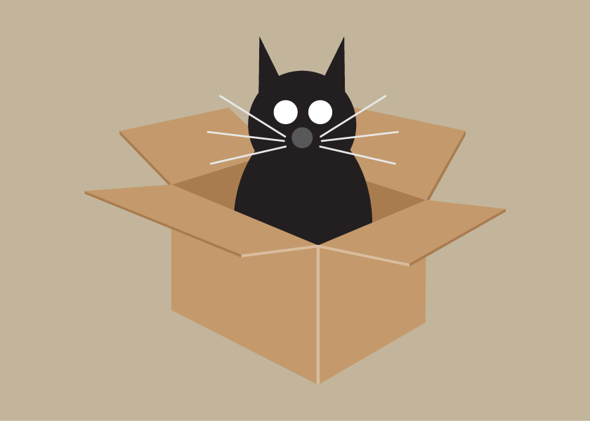 Image of Cat in Box Collection