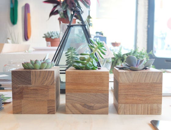 Image of Plant block