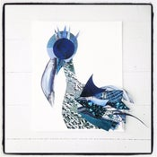 Image of Sea Starlet