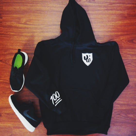 Image of VINYLWORKZ SHIELD x 100 Pullover