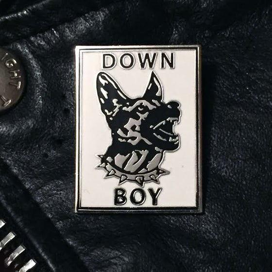 Image of DOWN BOY dog pin