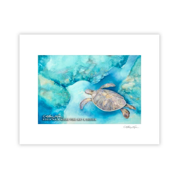 Image of Sea Turtle, Archival Paper Print