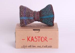 Image of Kastor