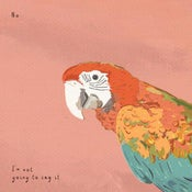 Image of Dolittle - Parrot