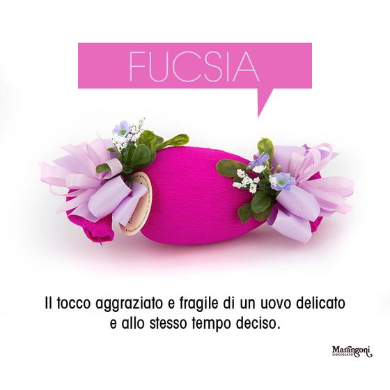 Image of Fucsia