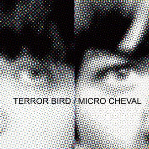 "Image of TERROR BIRD / MICRO CHEVAL - 12"" Split LP"