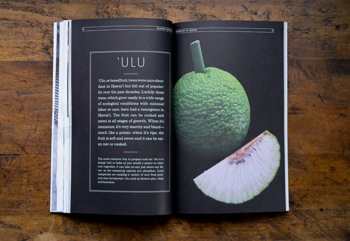 Image of Issue 17: Taste