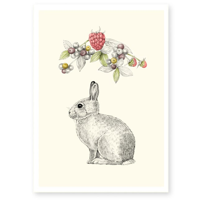 Image of Affiche A4 Lapin