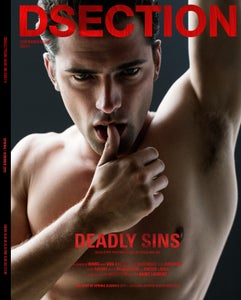 Image of DSECTION #13 // DEADLY SINS // COVER 3