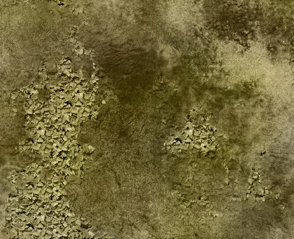 Image of Scrubland -- 4'x6' plus -- #190