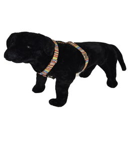 Image of Aztec - Dog Harness in the category  on Uncommon Paws.