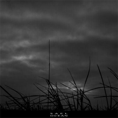 Image of Sael - Ocean - MCD
