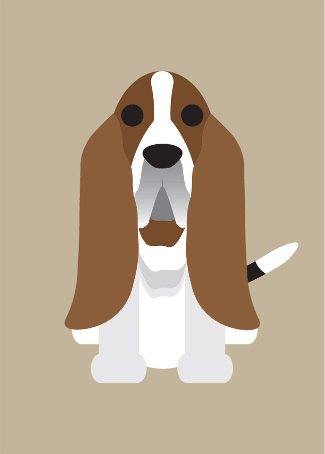 "Image of ""B"" Dog Collection: Bassett Hound, Beagle, Bearded Collie, Bernese, Bichon"