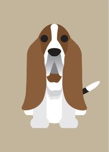 "Image of ""B"" Dog Collection: Bassett Hound, Beagle, Bearded Collie, Bernese, Bichon"