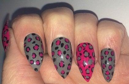 Image of Grey Leopard