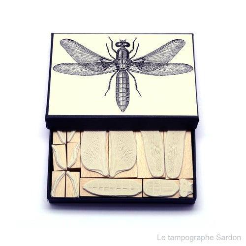 Image of Libellule déprimée - Dragonfly