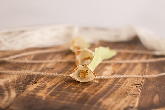 Image of Cream Flower Tieback
