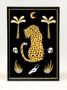 Image of Panthera pardus - Leopard