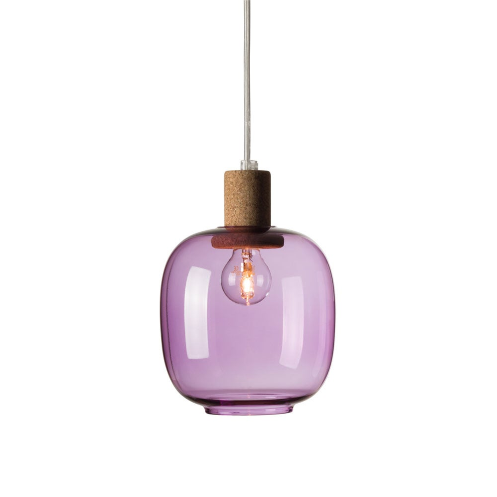 Image of Picia suspension orchid purple