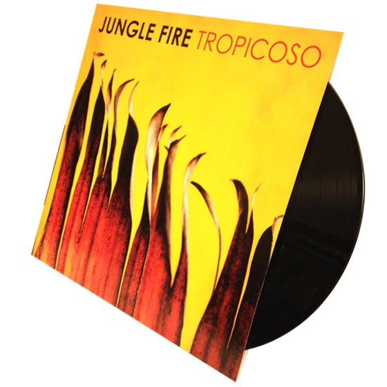 Image of Tropicoso - LP
