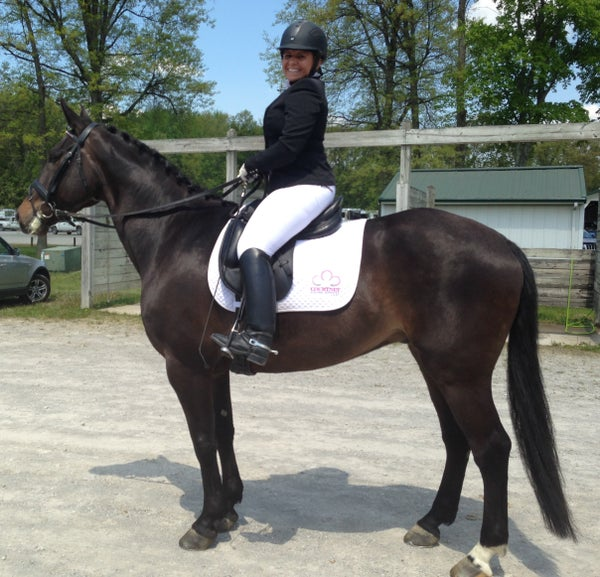 Image of Courtney Equine Services LLC EOUS Saddle Pad