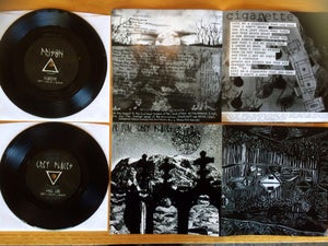 Image of (brick17) GREY PLACES / PRISON - split 7""