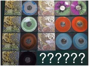 Image of LP Bundle - Both LPs on mystery color vinyl
