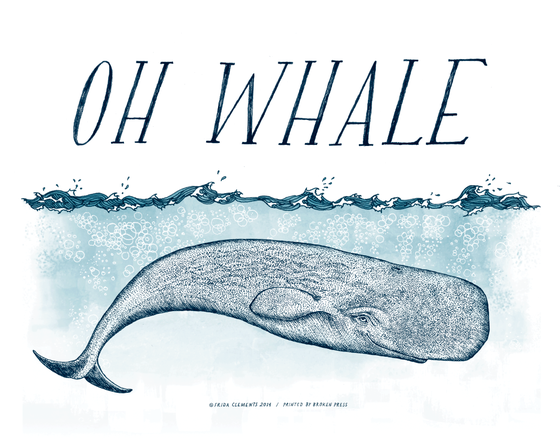 Image of Oh Whale / 8x10 Color Print