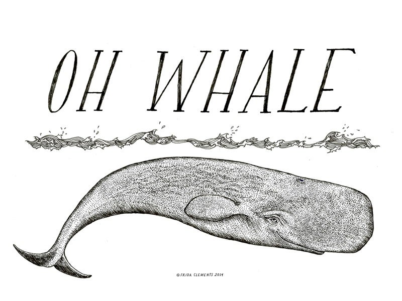 Image of Oh Whale / Mini Print