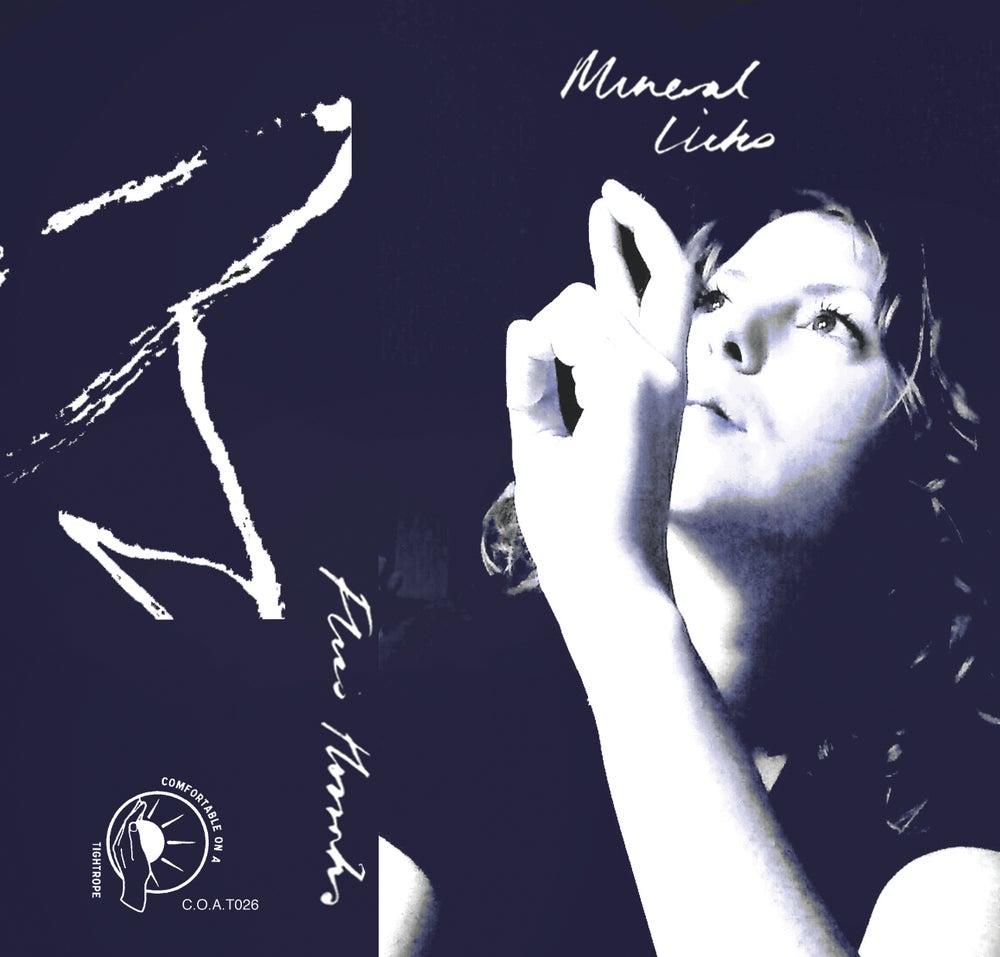 Image of FLISS HORROCKS <br /> MINERAL LICKS <br />debut cassette album
