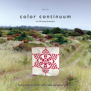 Image of Color Continuum -- no. 04 duochromatic