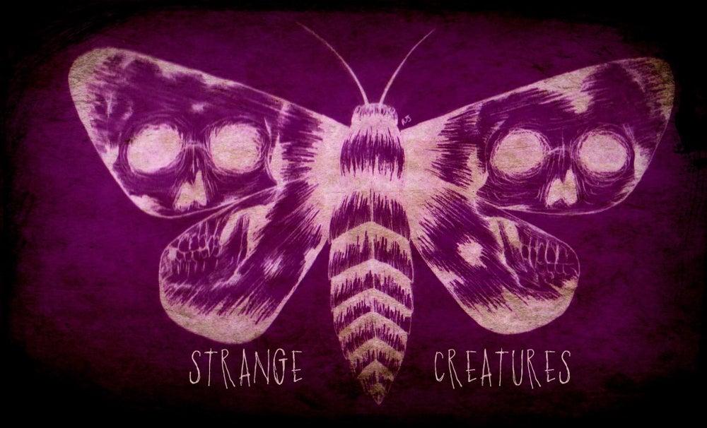 Image of Strange Creatures EP