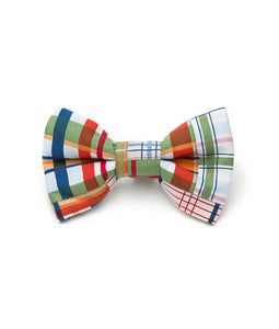 Image of Madras - Bow Tie in the category  on Uncommon Paws.