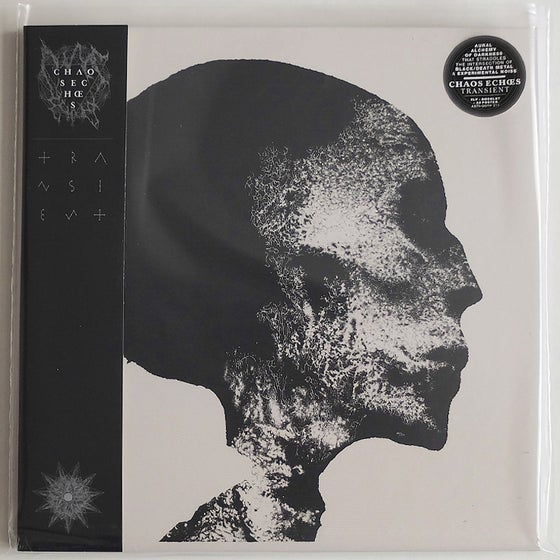 Image of TRANSIENT 2LP Regular Edition