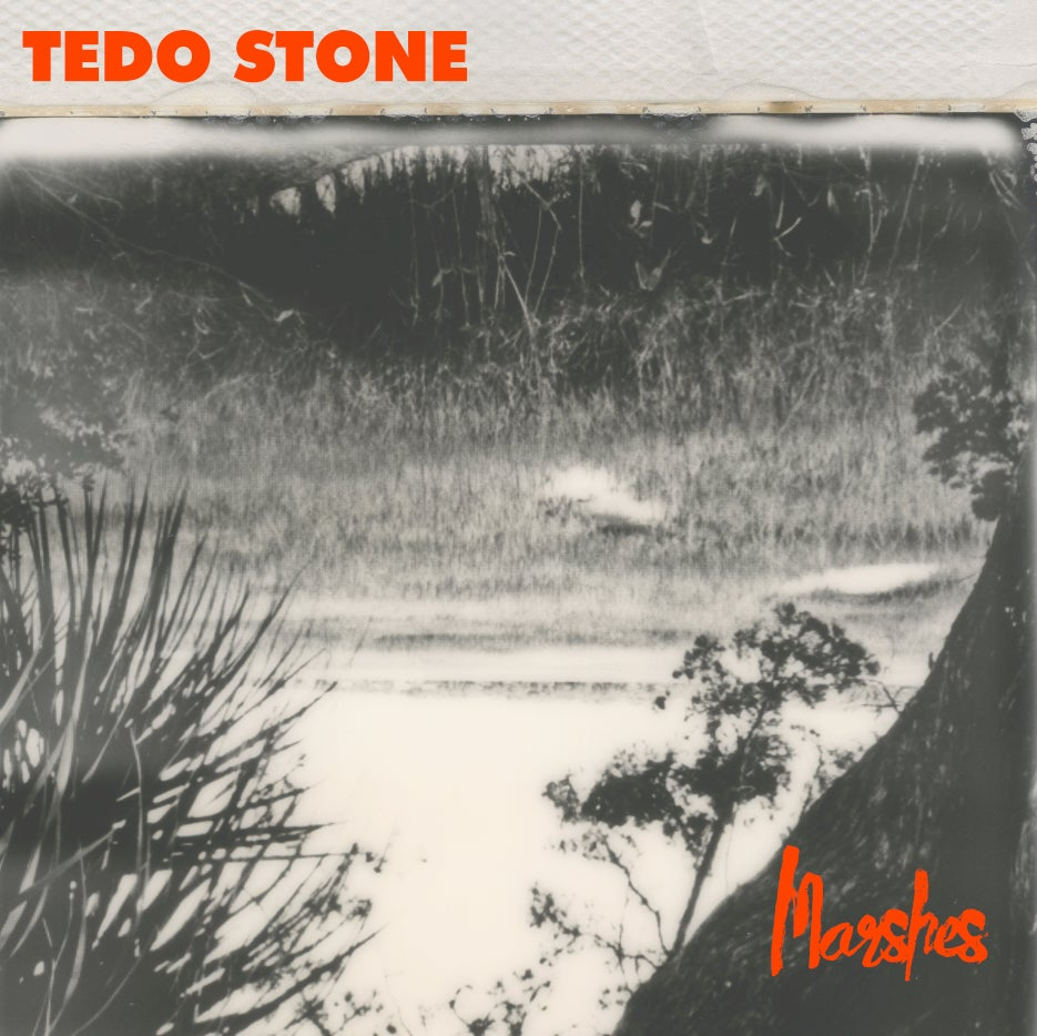 Image of Tedo Stone - Marshes {RED LP}
