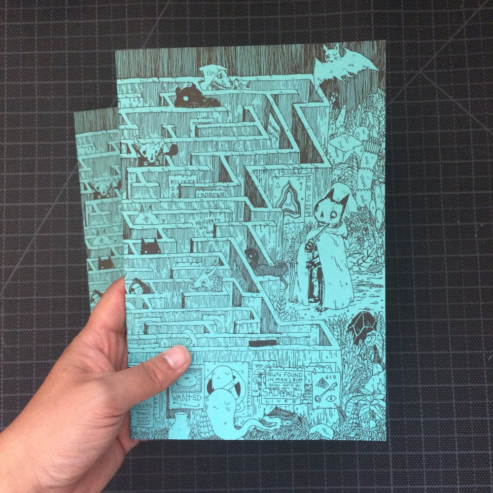 Image of Maze Blank Book