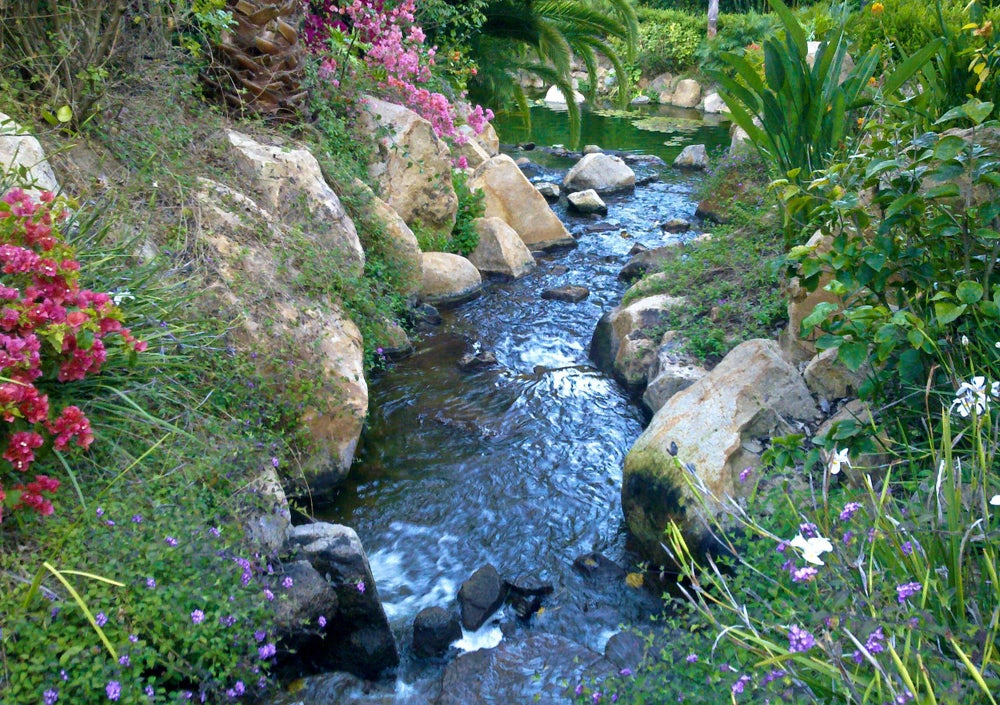 Image of Stream in Fallbrook, CA