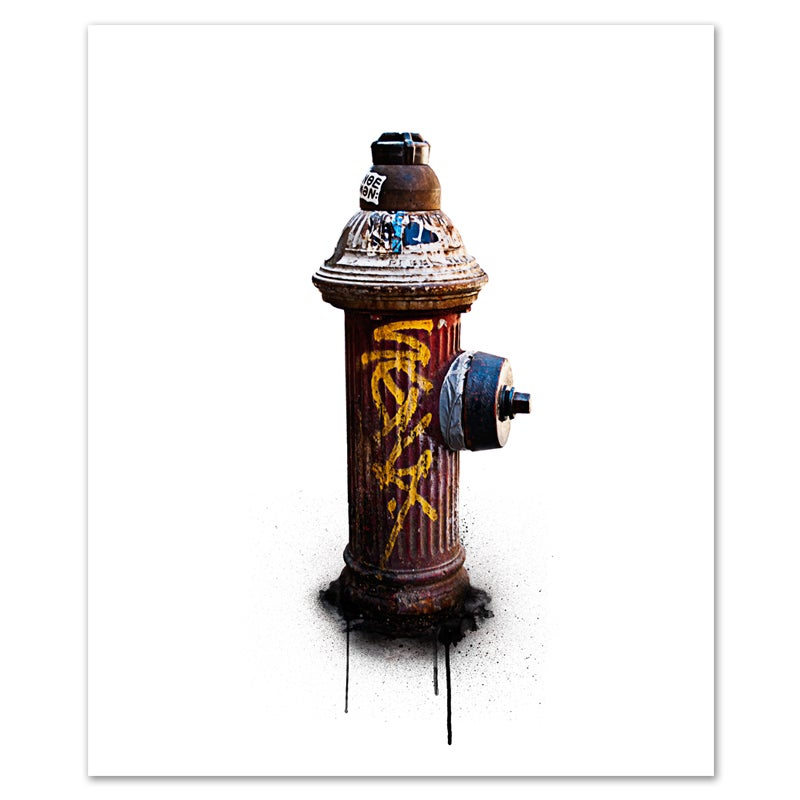 Image of Hydrant #1
