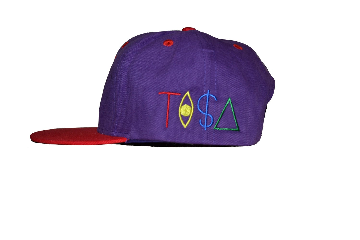 Image of TI$A RAPTORS CAP