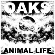 Image of Oaks - Animal Life (LP)